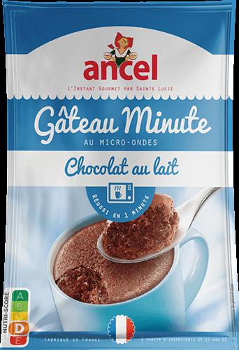 Gâteau minute au chocolat au lait